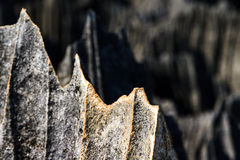 Tsingy spikes close up Royalty Free Stock Photo