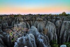 Tsingy sundown landscape Stock Image