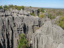 Tsingy van Bemaraha Royalty-vrije Stock Foto