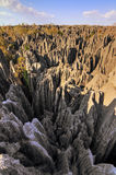 Tsingy vertical rocks Stock Images