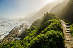 Tsitsikamma national park, Garden Route, Indian ocean, South Africa Stock Images