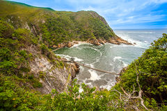 In the Tsitsikamma National Park. South Africa Royalty Free Stock Images
