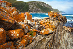 Tsitsikamma National Park South Africa. Beach at Tsitskamma National Park South Africa Stock Photo