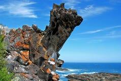 Tsitsikamma Nationalpark Lizenzfreie Stockfotos