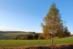 Tsjechisch landschap Royalty-vrije Stock Foto's