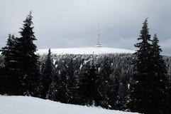 Tsjechische berg - Praded Stock Foto