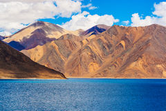 Tso de Pangong, lago Himalaia bonito, Ladakh, Índia do norte Imagem de Stock Royalty Free