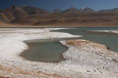 Tso Kar расположенное в плато Rupshu, Ladakh озера сол, Индия Стоковая Фотография RF