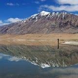 Tso Kar lake in Ladakh, North India Royalty Free Stock Photo