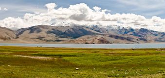 Tso-moriri lake in Ladakh, India. The lake lies at an altitude of 4600 meters on the Himalayas Stock Photos