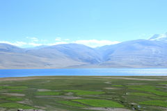 Tso-moriri lake in Ladakh. Royalty Free Stock Photos