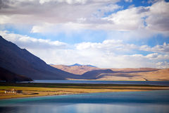 Tso Moriri Lake, ladakh Stock Images