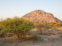 Tsodilo Hills heritage site in the kalahari of Botswana during the golden hour.  royalty free stock image