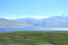 Tsomoriri湖在拉达克 免版税库存照片