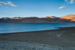 TsoMoriri湖 库存照片