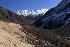 Tsopta dal, Sikkim. Arkivfoto