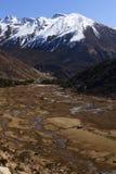 Tsopta dal, Sikkim. Arkivbild