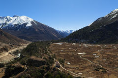 Tsopta Valley, Sikkim. Stock Photos