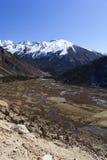 Tsopta Valley, Sikkim. Royalty Free Stock Photos