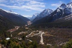 Tsopta Valley, Sikkim. Stock Images