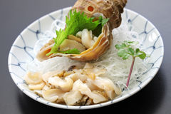 Tsubu gai sashimi, japanese whelk sashimi Stock Photo