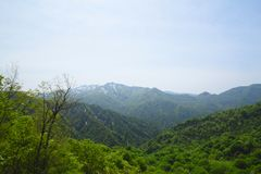 Tsugaru  Pass in  Shirakami-Sanchi    ) Stock Photography