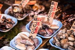Tsukiji Fish Market in Japan. Royalty Free Stock Photography