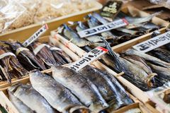 Tsukiji Fish Market in Japan. Royalty Free Stock Photos