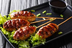 Tsukune kurczaka Japońscy klopsiki skewered dalej i typowo piec na grillu nad węglem drzewnym w górę talerza, horyzontalny zdjęcie royalty free