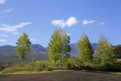 Tsumagoi landskap av den tidiga hösten i Japan Arkivfoto