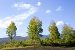Tsumagoilandschap van de vroege herfst in Japan Royalty-vrije Stock Foto