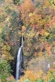 Tsumijikura Taki vattenfall Fukushima Royaltyfri Fotografi