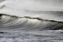 Tsunami. Big waves during a storm in the north Portuguese coast Royalty Free Stock Photography