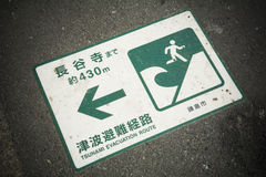 Tsunami evacuation Royalty Free Stock Images