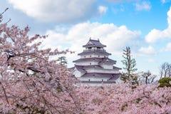 Tsuruga Castle & x28;Aizu castle& x29; surrounded by hundreds of sakura tr Stock Photo