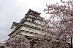 Tsurugajo Schloss im Frühjahr Lizenzfreies Stockfoto