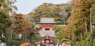 "Tsurugaoka hachiman-GÅ ""tempel stock fotografie"