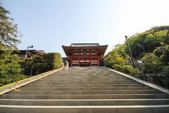 Tsurugaoka Hachimangu寺庙,镰仓,日本 免版税库存照片