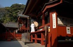 Tsurugaoka Hachimangu, Kamakura, Japan Royalty Free Stock Photos