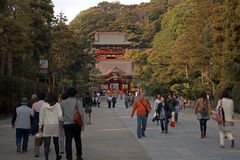 Tsurugaoka Hachimangu, Kamakura, Japan Royalty Free Stock Photography
