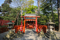 Tsurugaoka Hachimangu shrine, Kamakura, Japan Stock Photo