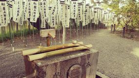 Tsurugaoka Hachimangu Sintoizm świątynia w Japonia Zdjęcia Stock