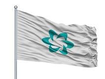 Tsushima-Stadt-Flagge auf Fahnenmast, Japan, Präfektur Nagasaki, lokalisiert auf weißem Hintergrund vektor abbildung