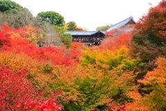 Tsutenkyo Bridge Stock Photography
