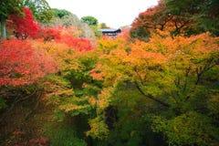 Tsutenkyo Bridge Royalty Free Stock Images