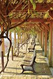 Tsuyama castle park with viewpoint benches royalty free stock images