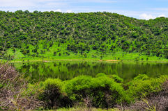 Tswaing Meteorite Crater Reserve Royalty Free Stock Image
