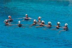 游泳的同步的tta 免版税库存照片