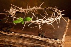 Tête de bible et de Pâques Image stock