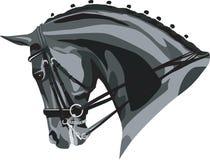 Tête de chevaux de Dressage Photos stock